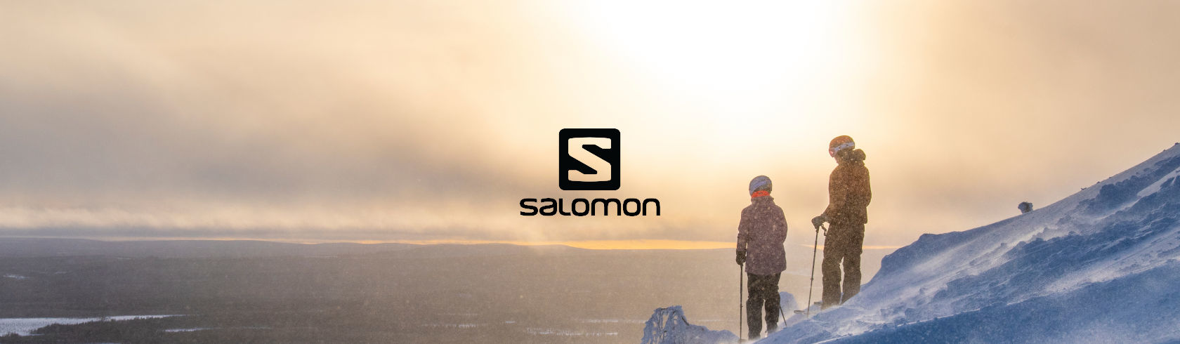 Salomon brand logo